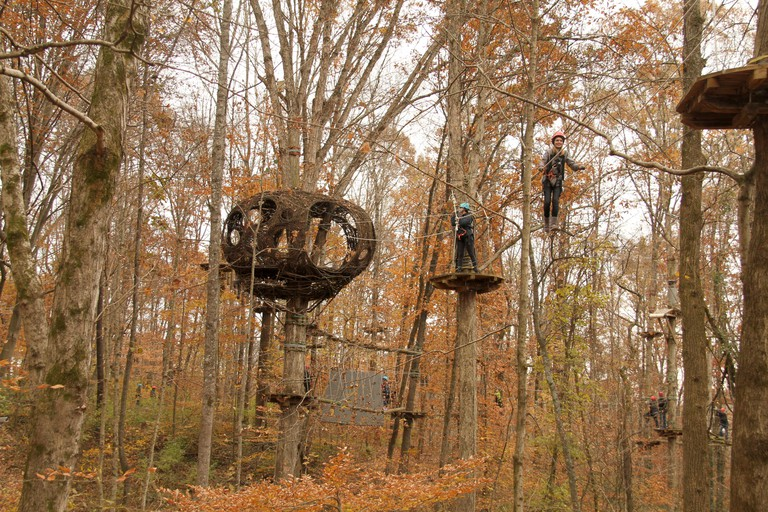 Navitat Knoxville, a tree-based zipline adventure park in Ijams Nature Center in Knoxville, Tennessee