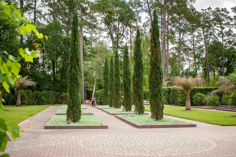 April 2017, Houston, Texas: A woman enjoys the Mercer Arboretum Botanical Gardens in Houston, Texas.