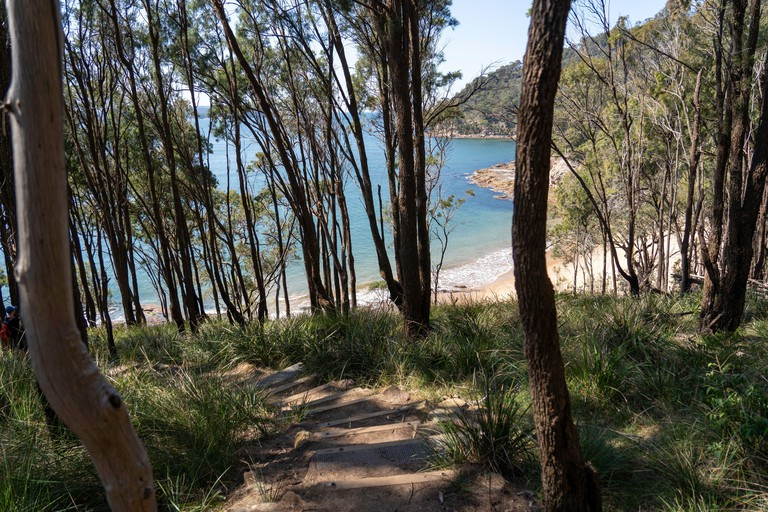 Bush walking in the Ku-ring-gai Chase National Park down to Flint and Steel Beach, north of Sydney,