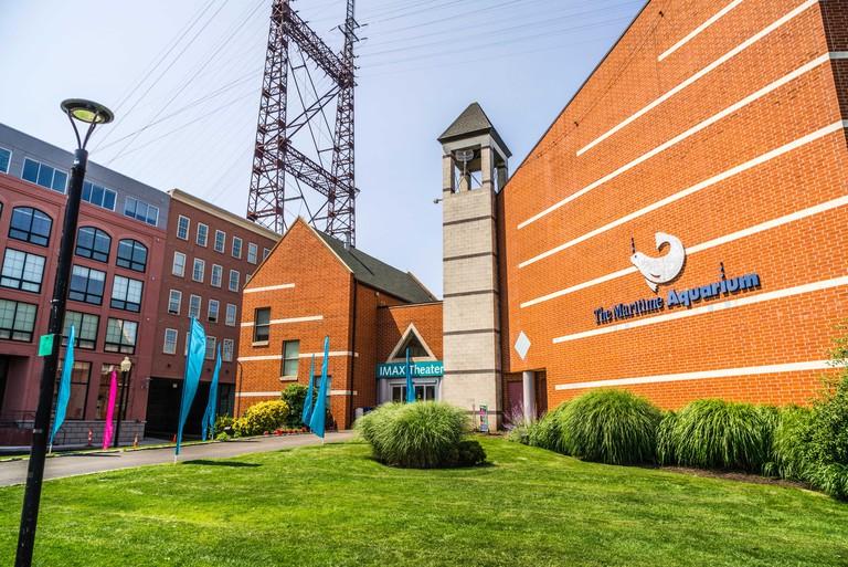 Maritime Aquarium _ Norwalk, Connecticut, USA