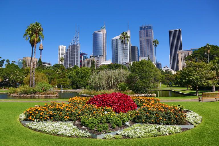 Sydney city skyline and CBD and the Royal Botanic Gardens, Sydney, New South Wales, Australia