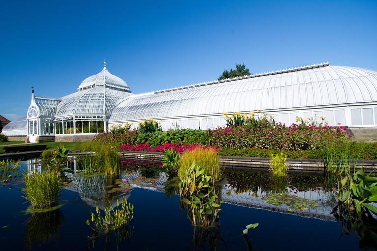 Phipps Conservatory and Botanical Gardens, Pittsburgh, Pennsylvania, USA
