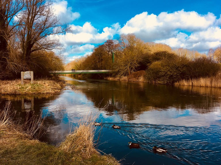 River Nene, Ferry Meadows Country Park in Peterborough, Cambridgeshire, UK.