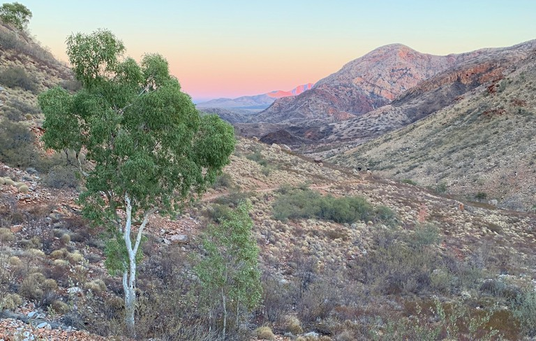 Ormiston Pound at sunrise, Larapinta Trail, Northern Territory, Australia