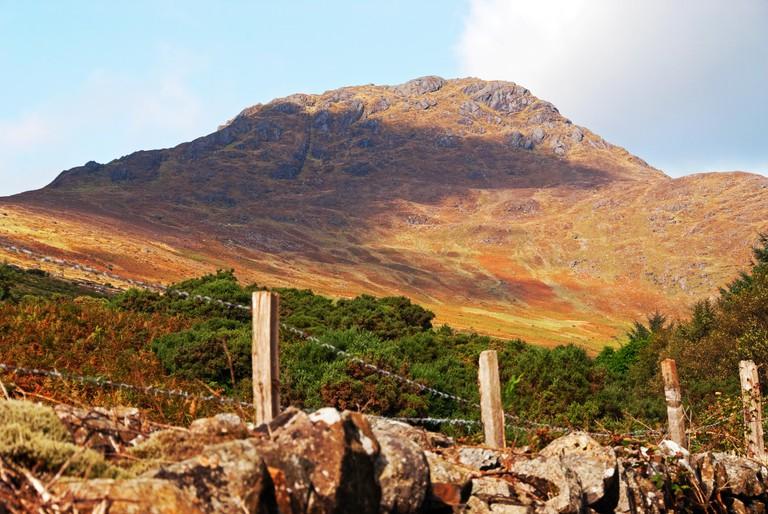 Slieve Foye, Carlingford Mountain, Carlingford, County Louth, Ireland