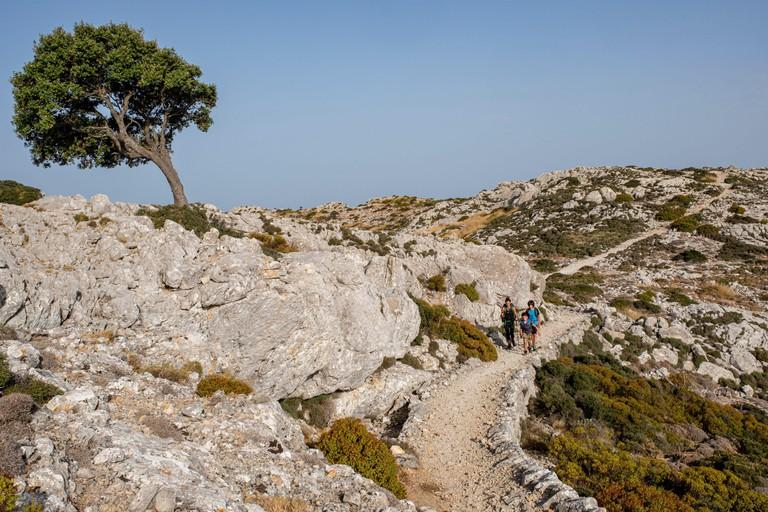 camino del Archiduque, - Cami de S'Arxiduc -, Valldemossa, Mallorca, Balearic Islands, Spain.