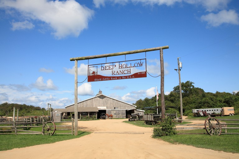Deep Hollow Ranch, Oldest Cattle Ranch in USA, Montauk, Long Island, New York, USA