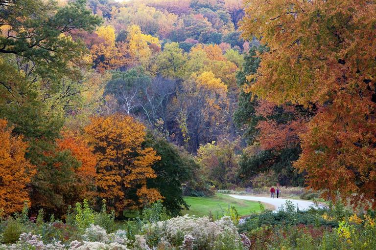 The United States National Arboretum. Image shot 2009. Exact date unknown.