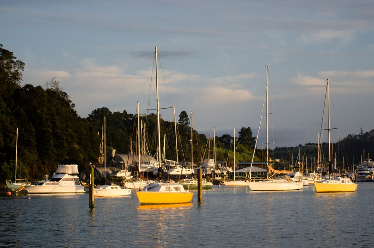 Opua marina at sunset in the Bay of Islands, New Zealand