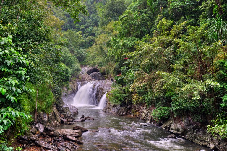 Crystal Cascades rainforest, Cairns, Queensland, Australia. Image shot 2014. Exact date unknown.