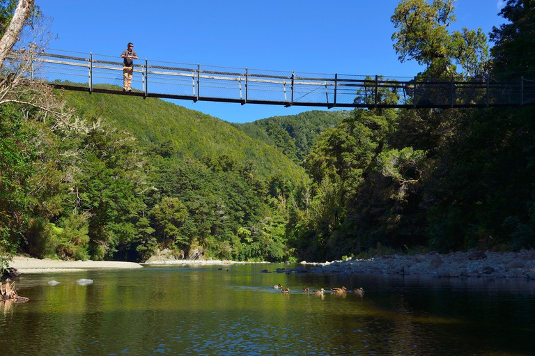 New Zealand North island Wellington Kaitoke regional Park where some scenes of the Lord of the Rings were filmed (The