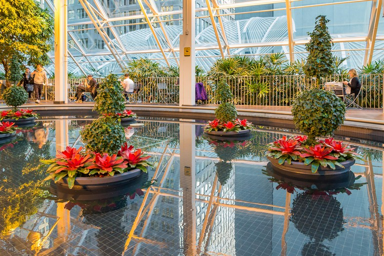 The Devonian Gardens, year round indoor Park, Calgary, Alberta, Canada