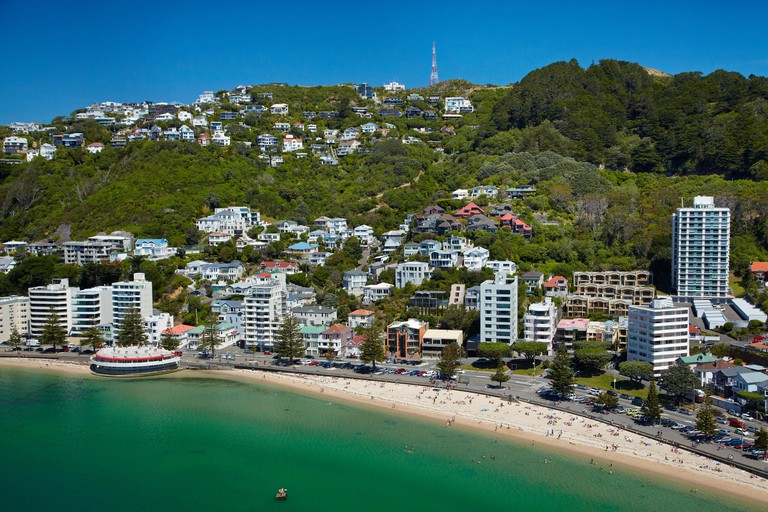 Oriental Bay, and Mt Victoria, Wellington, North Island, New Zealand - aerial