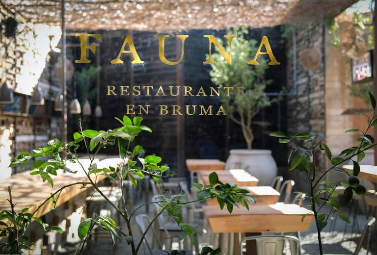 Fauna Restaurant In Valle De Guadalupe,Mexico