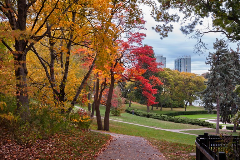 A trail and autumn colours in High Park, Toronto, Ontario, Canada.