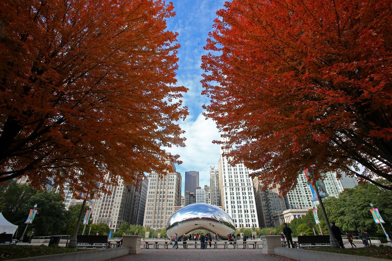 Fall colors and foliage at Millennium Park in Chicago, Illinois, United States.