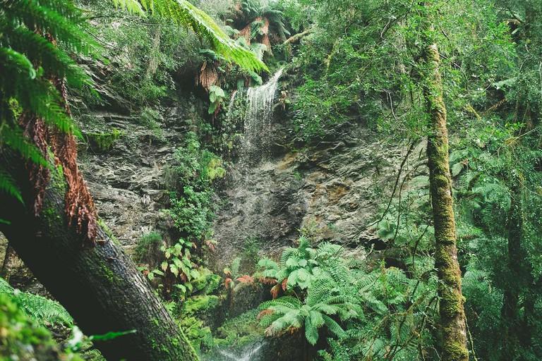 Lovers Falls, Tasmania