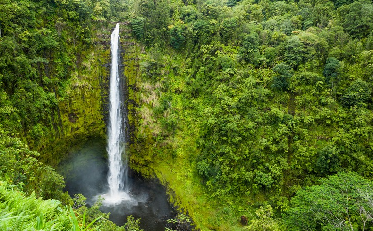 Akaka Falls on the Big Island of Hawaii, USA