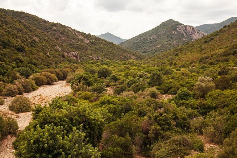 Monte Arcosu, Sardinia