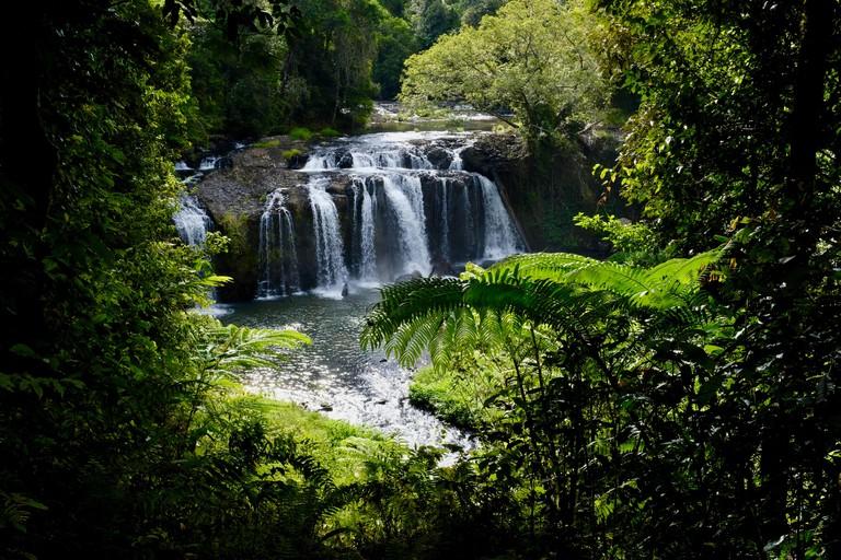 Peering through the tropical jungle to Wallicher Falls, Wooroonooran National Park, Atherton Tablelands, QLD, Australia