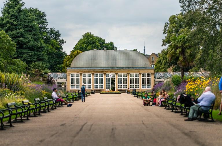 Greenhouse in Sheffield Botanical Gardens - Summer 2019