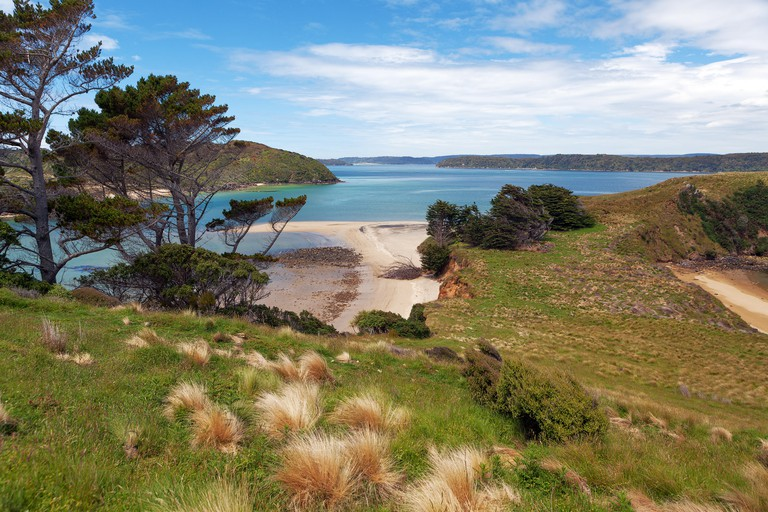 View of Native Island from Stewart Island, Wohlers monument lookout, New Zealand