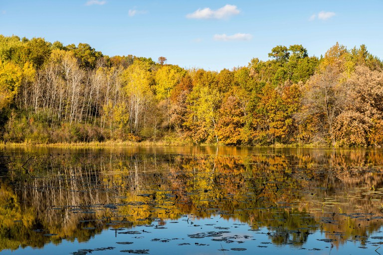 Autumn leaves reflected in Jensen Lake at Lebanon Hills Regional Park in Eagan, MN.