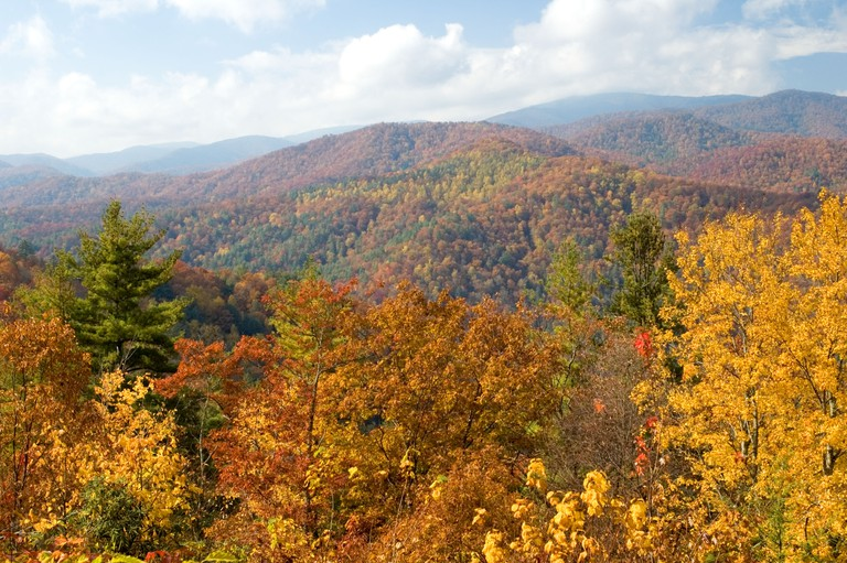 Fall Color in Cataloochee Valley in the Great Smoky Mountains National Park in North Carolina