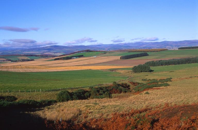 Sidlaw Hills near Gallow Hill Strathmore Scotland