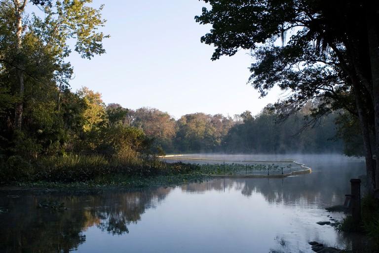 Lake, Wekiva Springs Florida. Image shot 2007. Exact date unknown.