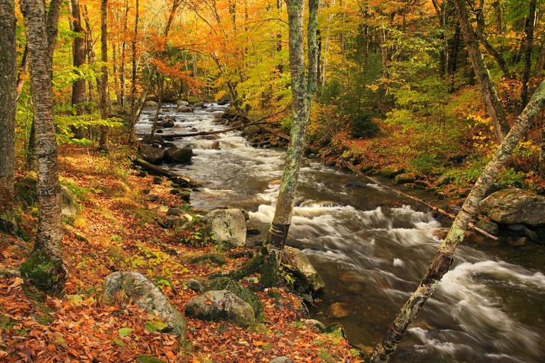 Mad River, Warren, Vermont