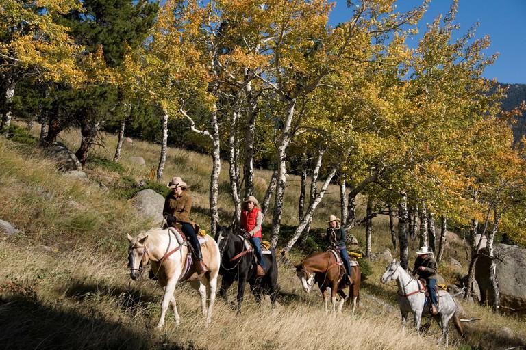 Family group outdoors riding horses on a wrangler-led ride,amid aspen