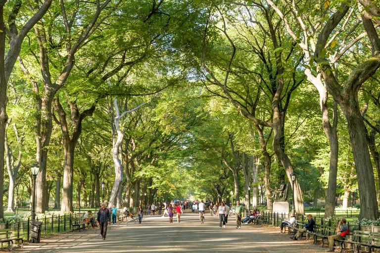 The Mall in Central Park, New York City, USA