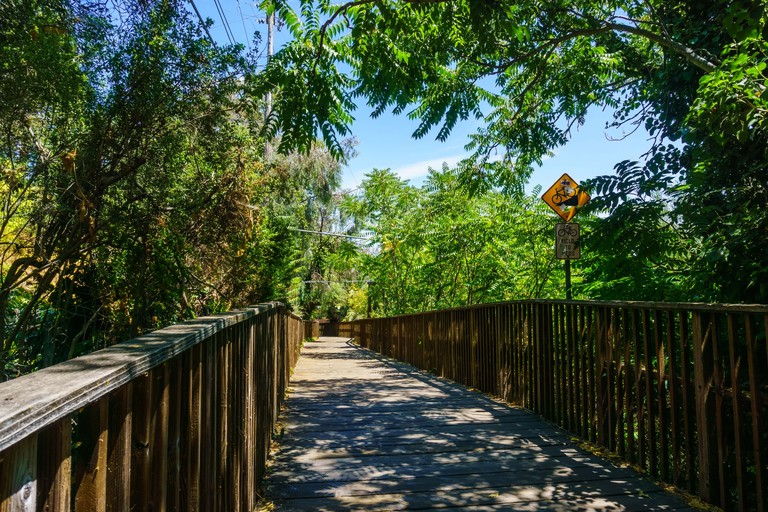 Los Gatos Creek Trail, California
