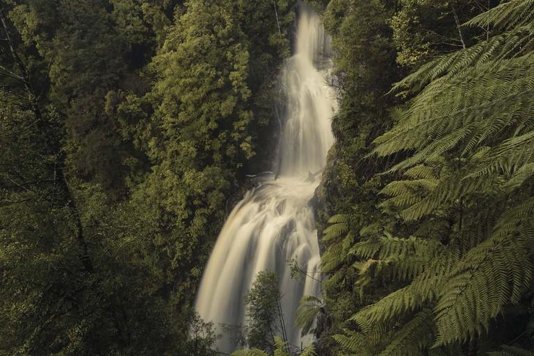 Philosopher Falls, Tasmania