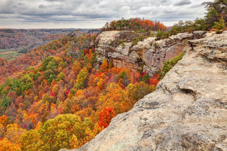 Fall colors, Red River Gorge, Kentucky