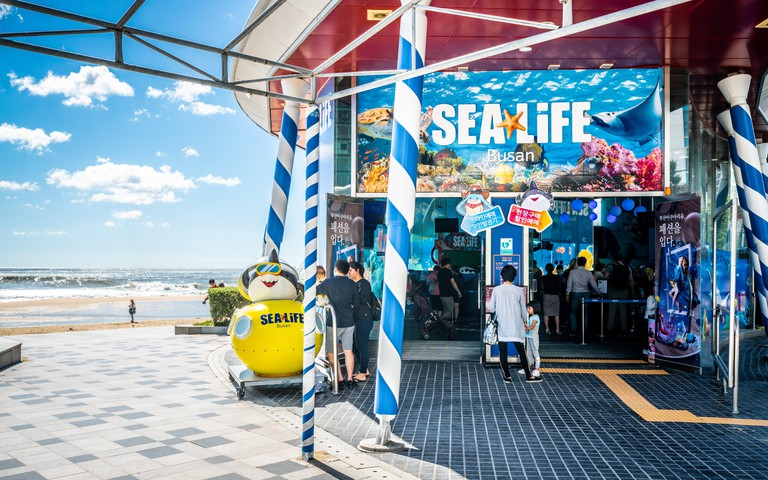 Busan Korea , 3 October 2019 : Entrance of Sea Life aquarium and Haeundae beach view in Busan South Korea