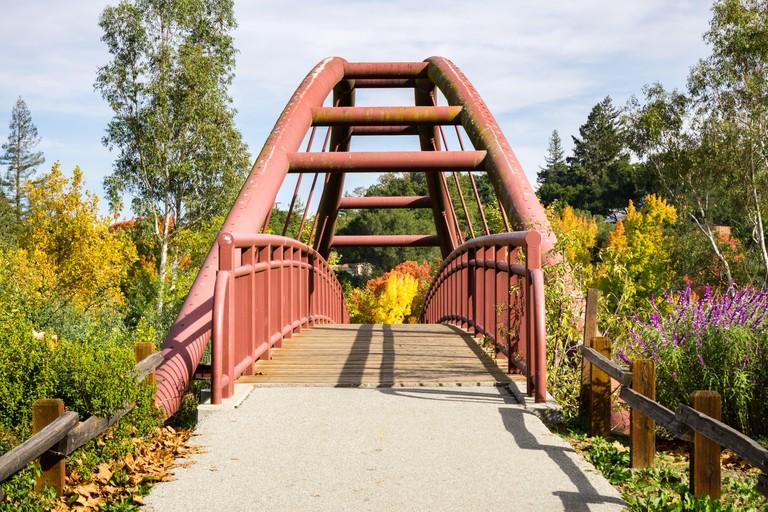 Bridge in Vasona Lake County Park, California
