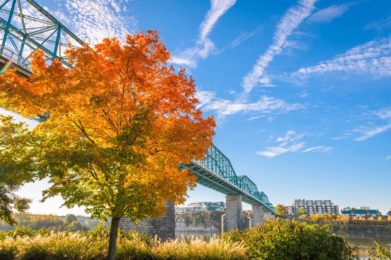 Chattanooga, Tennessee, USA during fall season at Walnut Street Bridge.