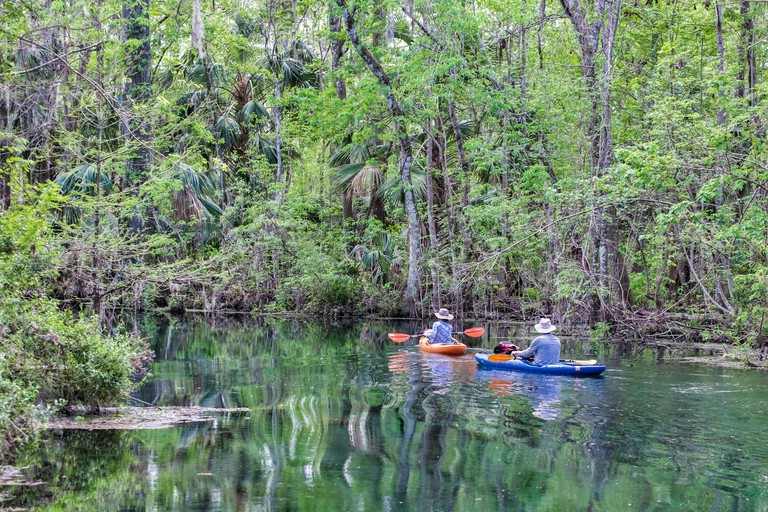 Couple kayaking on Silver River, Silver Springs State Park, Silver Springs, Florida, USA