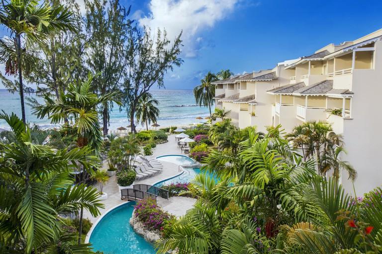 Bougainvillea Barbados
