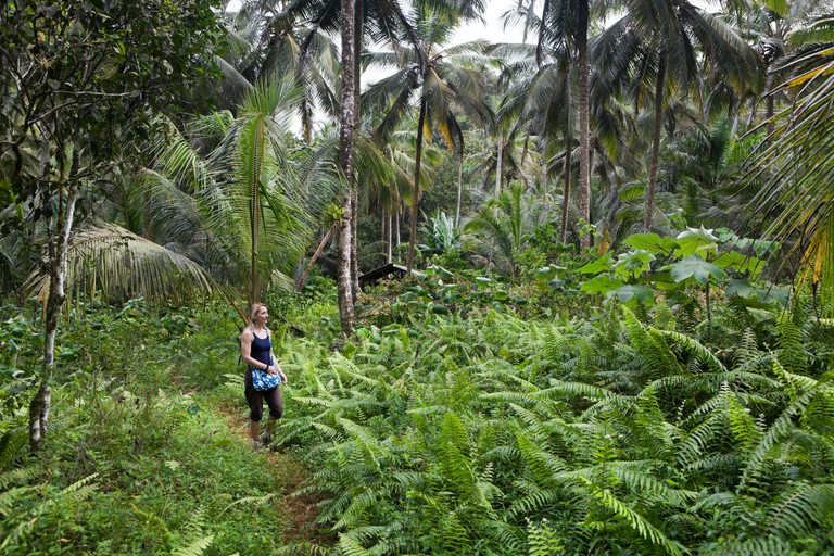 Hiking at Los Haitises National Park, Los Haitises National Park, Dominican Republic