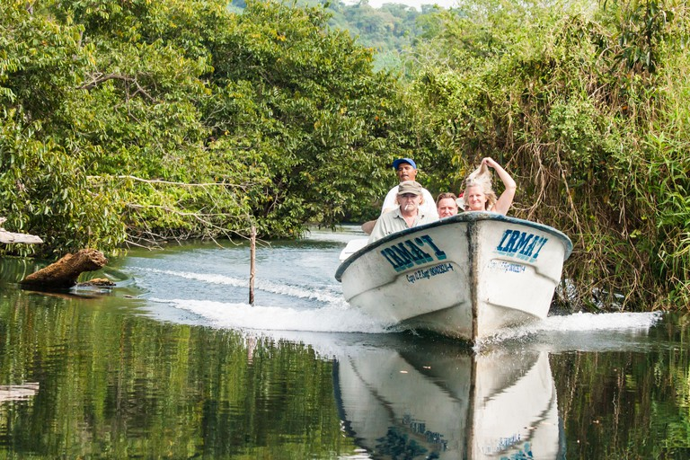 Mangrove forest La Tobara (Tovara) National Park Nayarit Mexico. Image shot 12/2012. Exact date unknown.