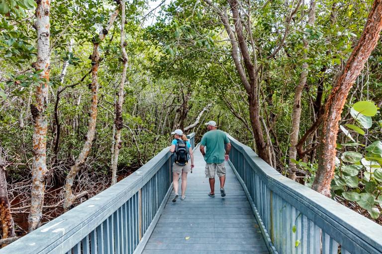Florida, South, Sanibel Barrier Island, J. N. J.N. JN Ding Darling National Wildlife Refuge, nature boardwalk, couple, sightseeing visitors travel tra