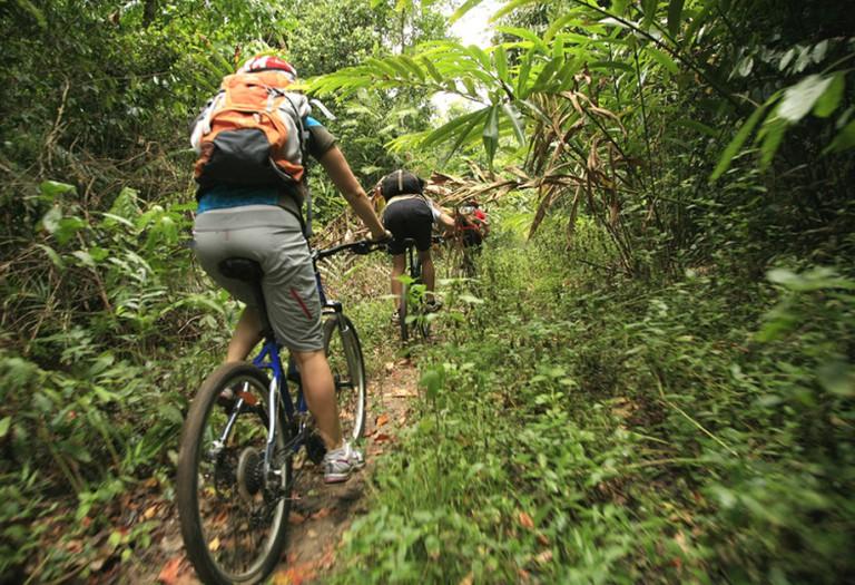 Dan's Mountain Biking