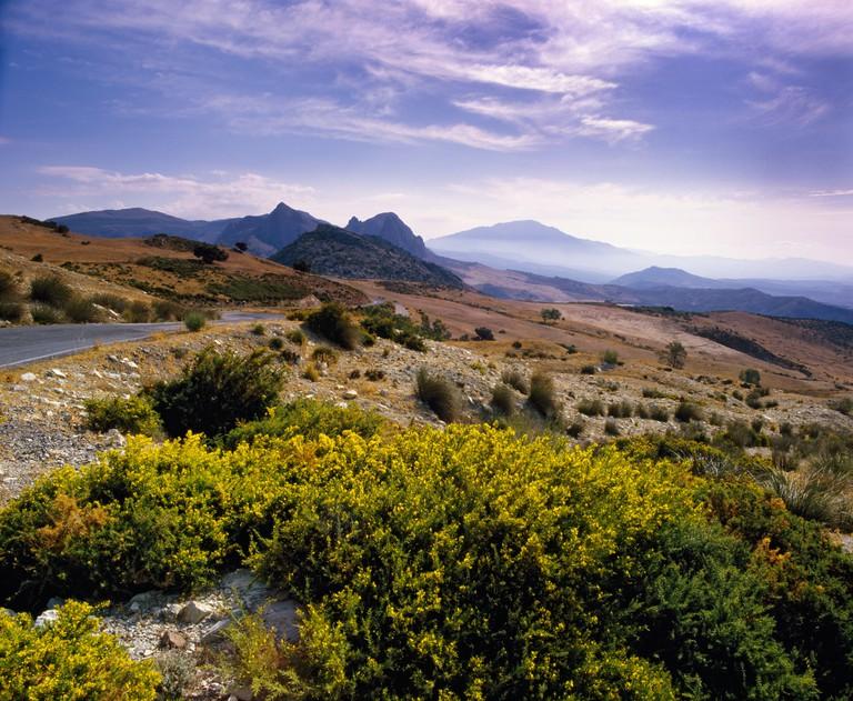 In the Montes de Malaga the mountains north of Malaga Andalucia Spain