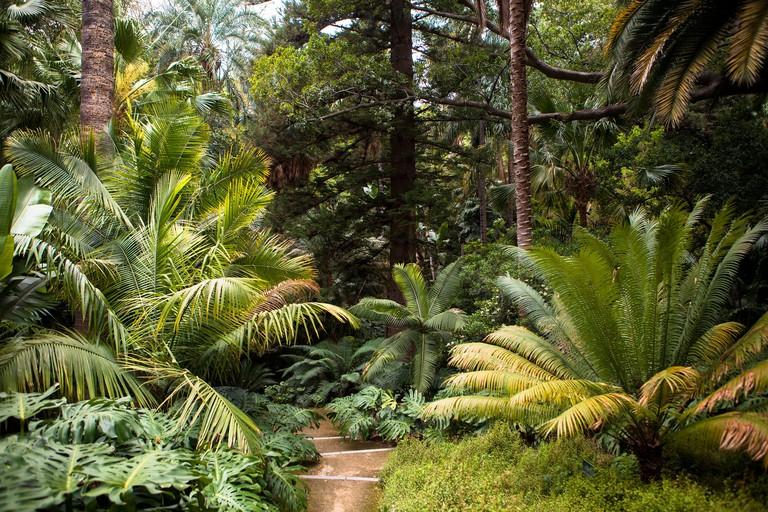 Botanical Gardens Malaga Spain