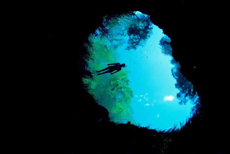 Snorkler at Blue hole, head spring that feeds Ichetucknee river, Florida, USA