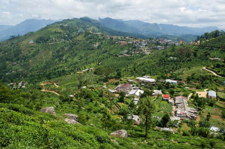 Tea plantations around Haputale, Sri Lanka