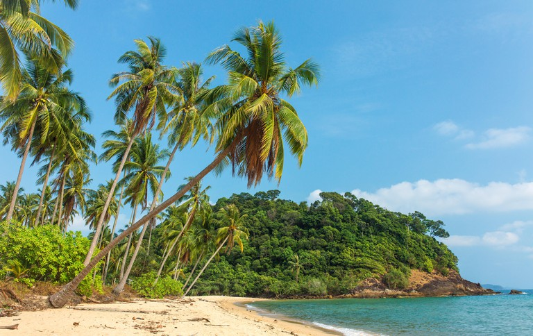 Beautiful tropical beach with palm trees on Koh Chang island in Thailand